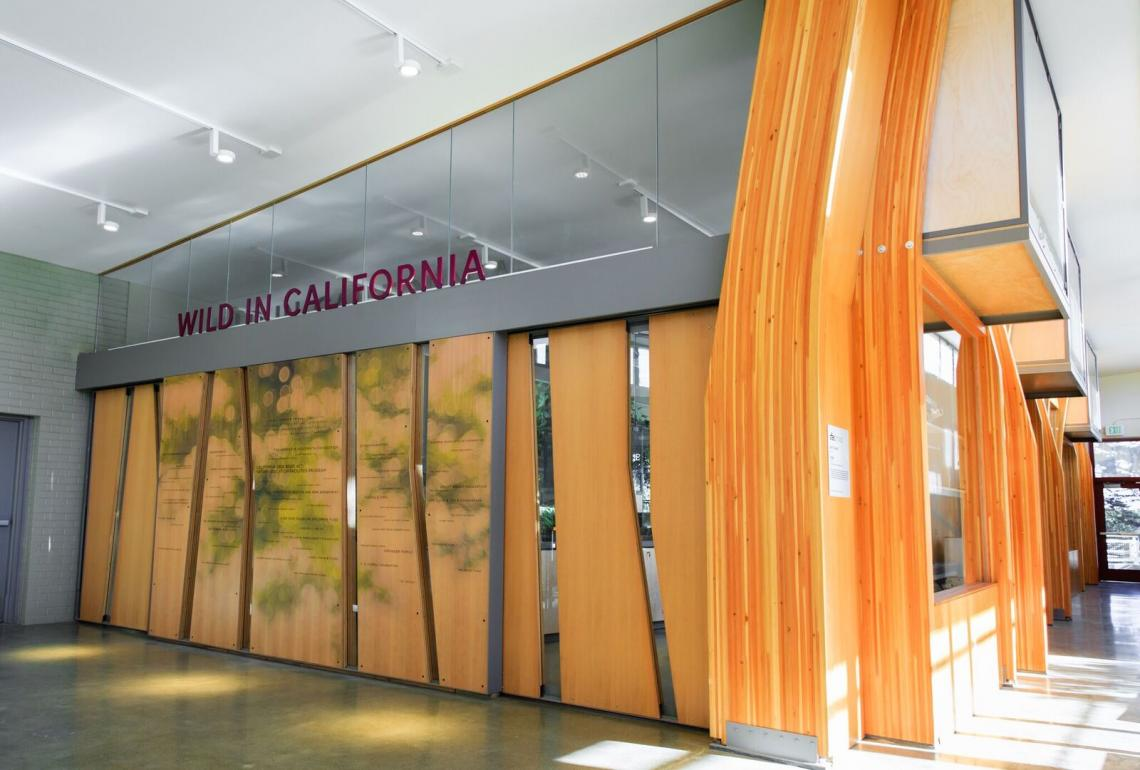 Interior view of exhibit space walls articulated with wood panels cut with angled window slats